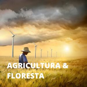 AGRICULTURA & FLORESTA